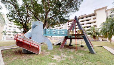Dove Playground 3D Model